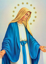 Mary Immaculate